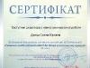 x002_sertif_amonashwili_danish
